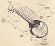 устройство струнных щипковых инструментов